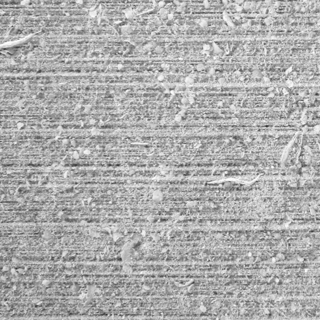 grigio alpi corteccia