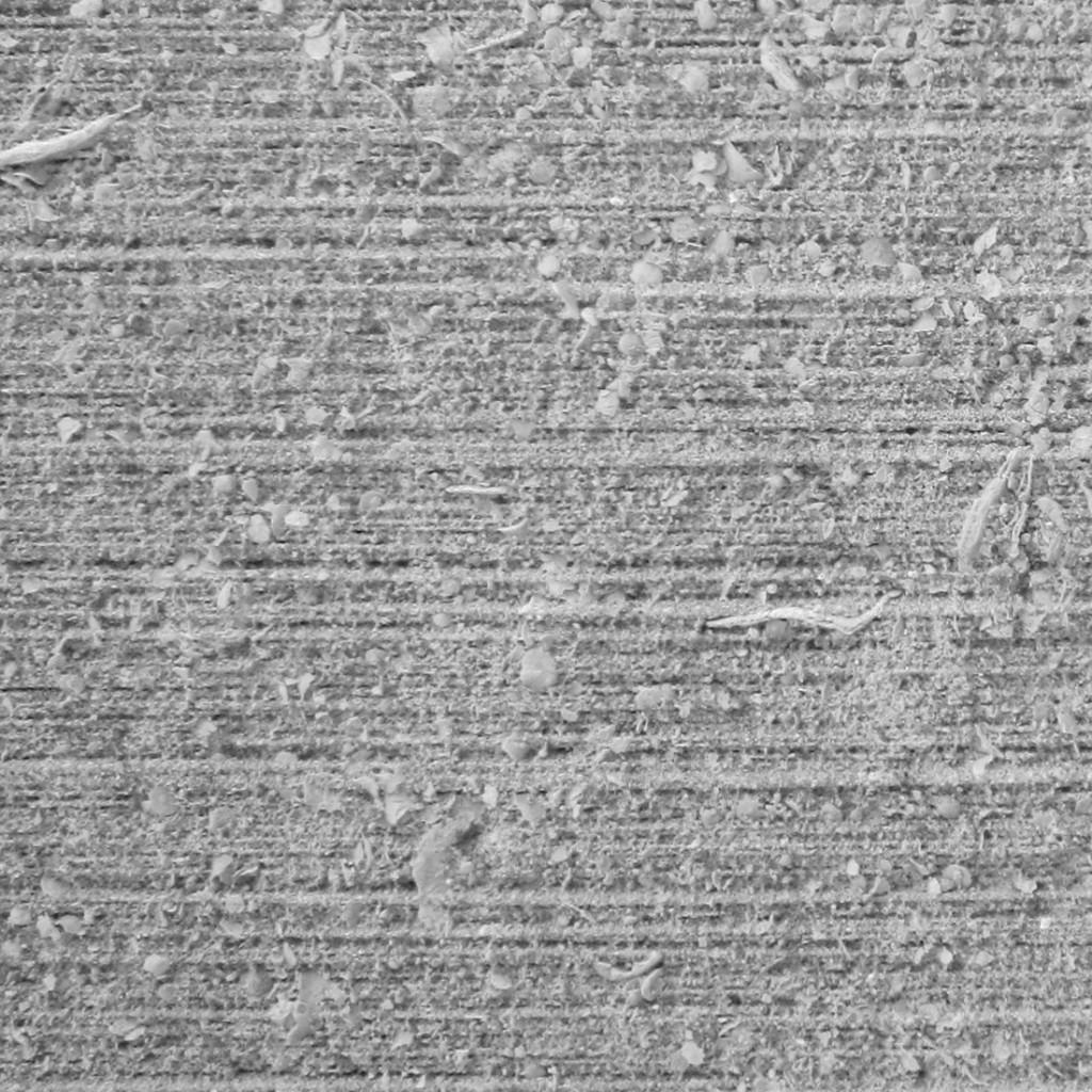 grigio argento corteccia